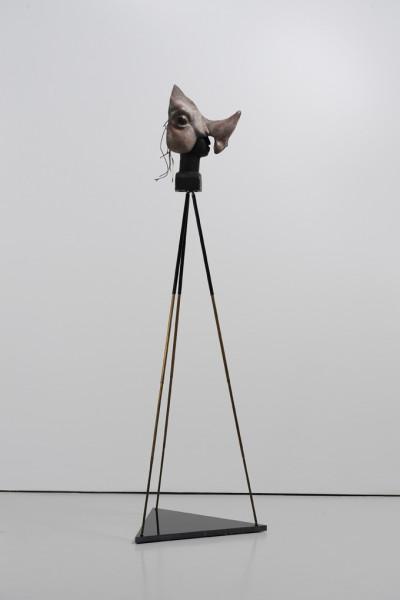 Gitte Schäfer ,Ariza, 2010