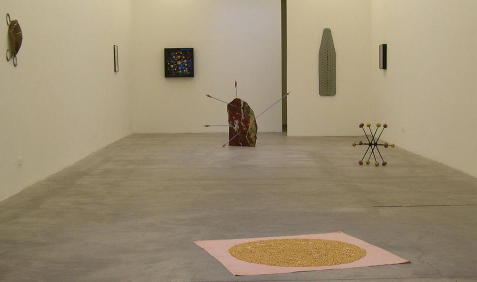 Gitte Schäfer ,Il segreto delle rane ramate ,installation view