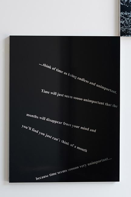Euan Macdonald, Untitled, 2015, enamel on aluminum (detail 2)